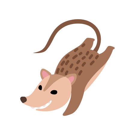 Cute Happy Opossum, Adorable Wild Animal Jumping Vector Illustration on White Background. 矢量图像