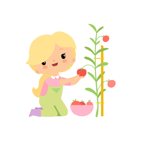 Cute Young Girl in Overalls and Rubber Boots Harvesting Tomatoes in Bowl, Farmer Girl Cartoon Character Working in Garden Vector Illustration on White Background. Ilustración de vector
