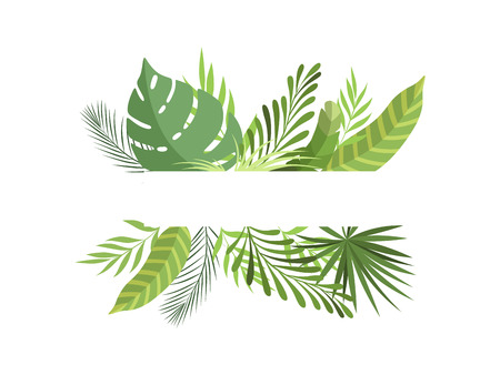 Foliage Border with Space for Your Text, Exotic Tropical Leaves, Banner, Poster, Wedding Invitation, Summer Greeting Card Design Element Vector Illustration on White Background. Vektorové ilustrace