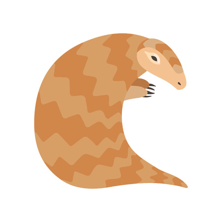 Cute Pangolin Rare Species of Animals Vector Illustration on White Background.