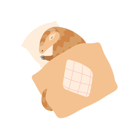 Cute Pangolin Cartoon Character Sleeping in His Bed, Rare Species of Animals Vector Illustration Illustration