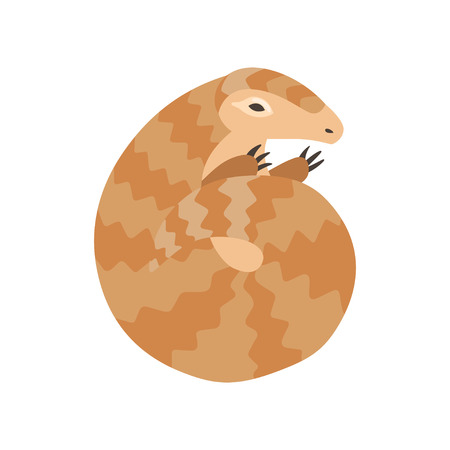 Cute Pangolin Curled Up, Rare Species of Animals Cartoon Vector Illustration on White Background.
