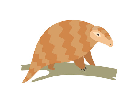 Cute Pangolin Sitting on Tree Branch, Rare Species of Animals Cartoon Vector Illustration on White Background.