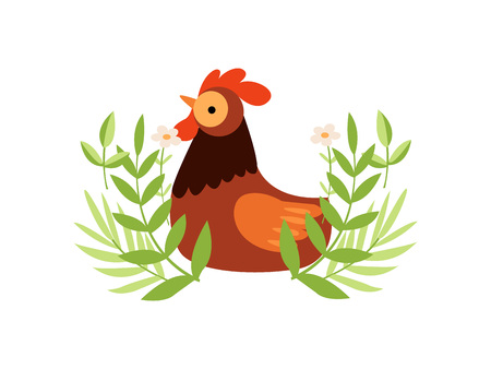 Colorful Rooster on Green Lawn, Farm Cock, Poultry Farming Vector Illustration on White Background. Illustration