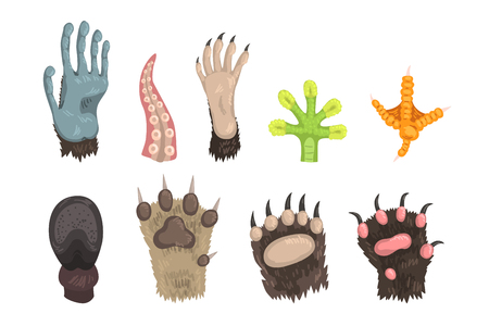 Set of paws of wild forest animals, pets and sea creatures dog, bear, cat, frog, monkey, chicken leg, horse hoof and tentacle of octopus. Colorful flat vector design isolated on white background.