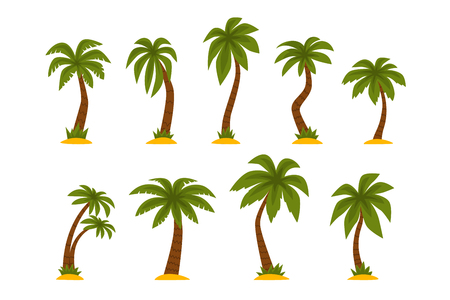 Collection of cartoon tropical palms. High trees with long green leaves and brown trunks. Graphic elements for mobile game or print. Colorful flat vector illustration isolated on white background.