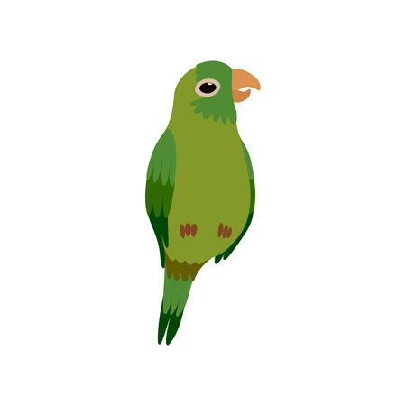 Little Parrot Bird, Cute Green Budgie Home Pet Vector Illustration on White Background.