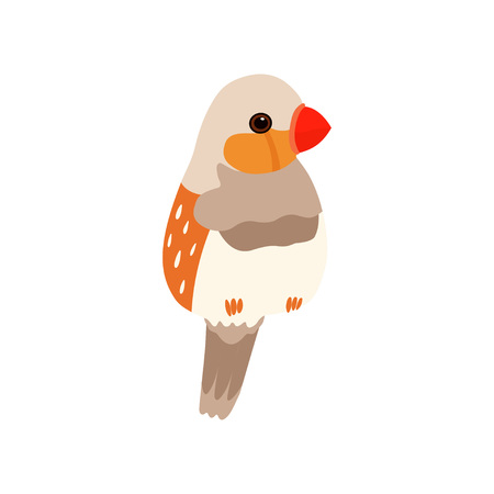 Little Amadin Bird, Cute Birdie Home Pet Vector Illustration on White Background.