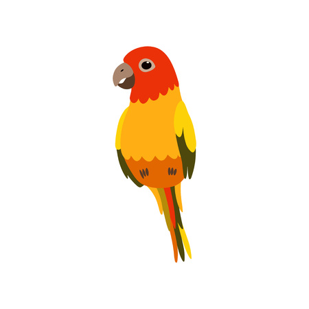 Little Finch Bird, Cute Birdie Home Pet Vector Illustration on White Background.