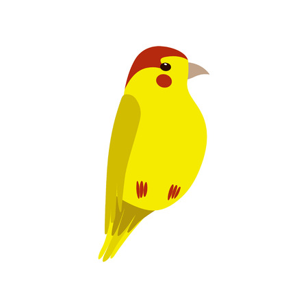Little Yellow Bird, Cute Birdie Home Pet Vector Illustration on White Background.