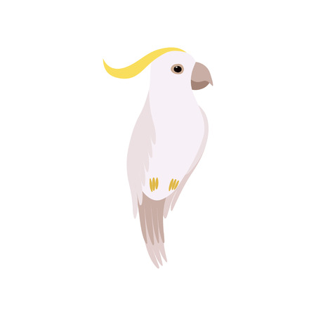 Little Cockatoo Bird, Cute Birdie Home Pet Vector Illustration on White Background.