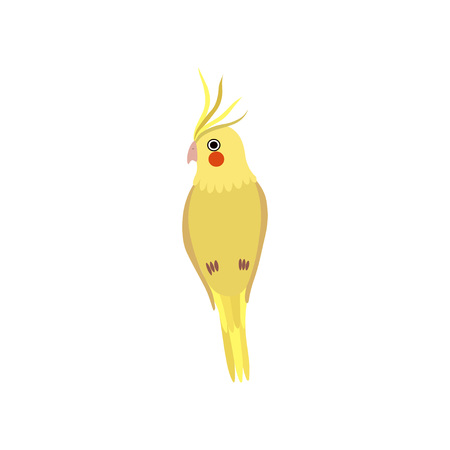 Little Yellow Parrot Bird, Cute Birdie Home Pet Vector Illustration on White Background.