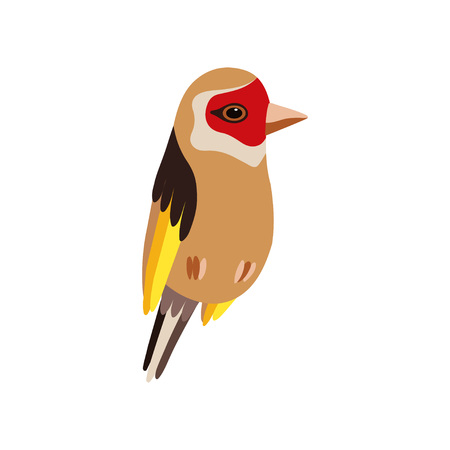 Little Goldfinch Bird, Cute Birdie Home Pet Vector Illustration on White Background. Иллюстрация