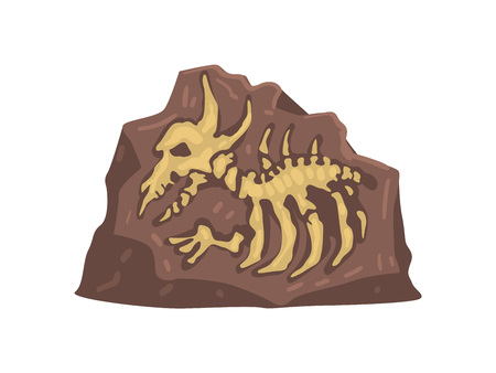 Restes de l'animal préhistorique, illustration vectorielle d'artefact archéologique