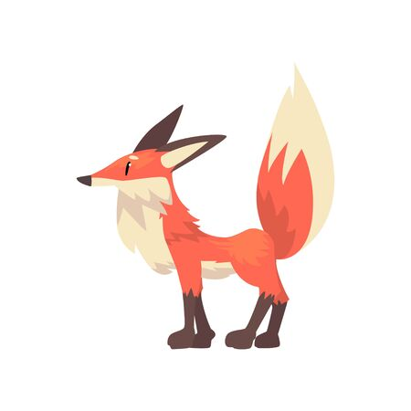 Cute Red Fox Cub Character, Side View Cartoon Vector Illustration on White Background.
