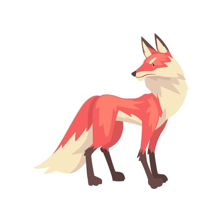 Beautiful Fluffy Red Fox Character Cartoon Vector Illustration on White Background.