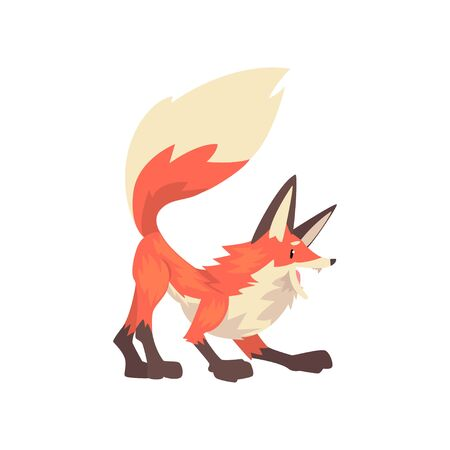 Aggressive Red Fox Character Cartoon Vector Illustration on White Background. Иллюстрация