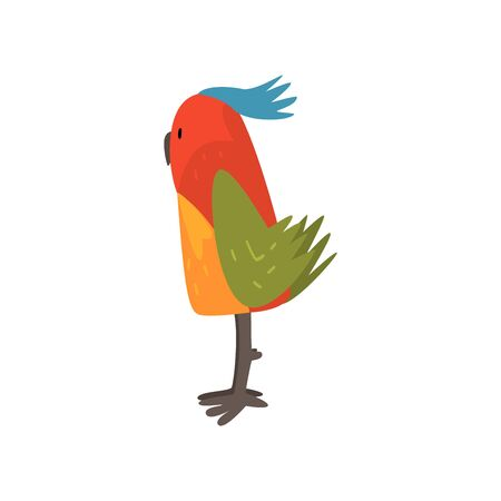 Cute Bird Cartoon Character with Bright Colorful Feathers and Tuft, Side View Vector Illustration on White Background. Illustration