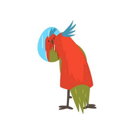 Cute Bird Lookig at Mirror, Funny Birdie Cartoon Character with Bright Colorful Feathers and Tuft Vector Illustration on White Background. Illustration
