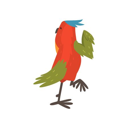 Cute Funny Bird Cartoon Character with Bright Colorful Feathers and Tuft, Back View Vector Illustration on White Background.