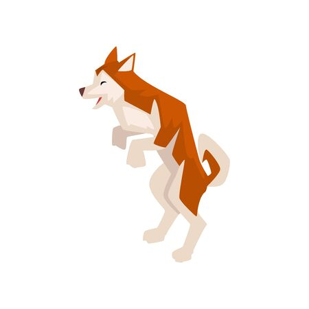 Shiba Inu Dog Standing on Hind Feet, Cute Brown Beige Fluffy Pet Animal Vector Illustration