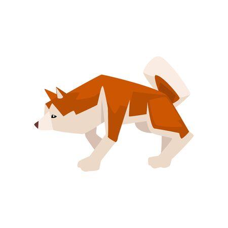 Shiba Inu Dog, Cute Crouching Brown Beige Fluffy Pet Animal Vector Illustration