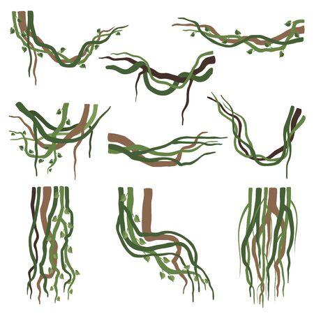 Tropical Winding Liana Branches Set, Jungle Plants Decorative Elements, Rainforest Flora Vector Illustration