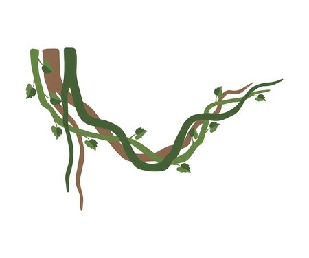 Tropical Winding Liana Branches, Jungle Plant Decorative Element, Rainforest Flora Vector Illustration