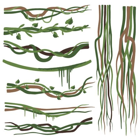 Tropical Liana Branches, Stems, Vines Set, Jungle Plants Decorative Elements, Rainforest Flora Vector Illustration