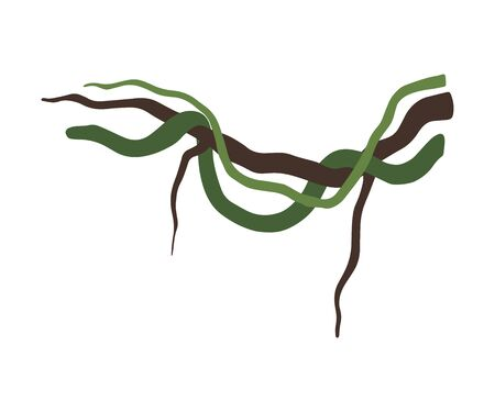 Liana Winding Branches, Jungle Plant Decorative Element, Rainforest Flora Vector Illustration