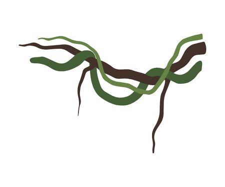 Liana Winding Branches, Jungle Plant Decorative Element, Rainforest Flora Vector Illustration