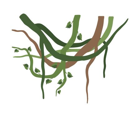 Green Liana Branches with Leaves, Jungle Plant Decorative Element, Rainforest Flora Vector Illustration Ilustração