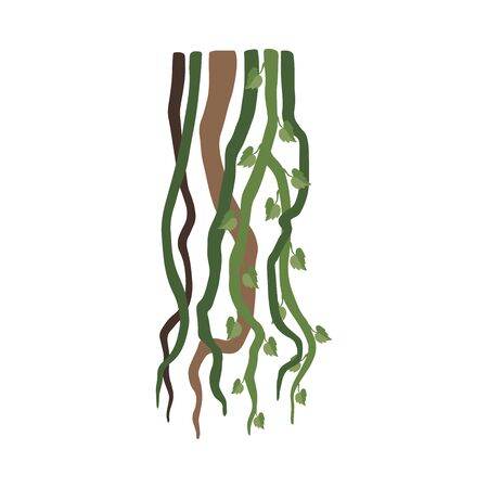 Liana Branches, Jungle Plant Decorative Element, Rainforest Flora Vector Illustration
