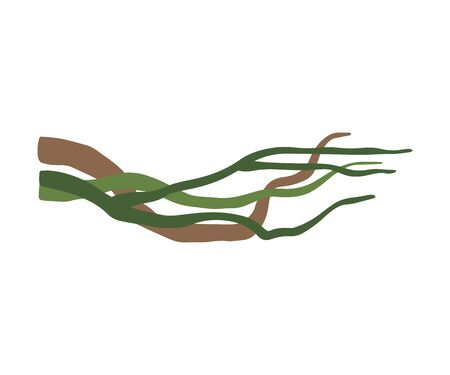Winding Liana Branches, Tropical Vines, Jungle Plant Decorative Element, Rainforest Flora Vector Illustration Ilustração