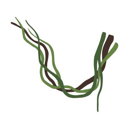 Tropical Winding Liana Branches, Vines, Jungle Plant Decorative Element, Rainforest Flora Vector Illustration