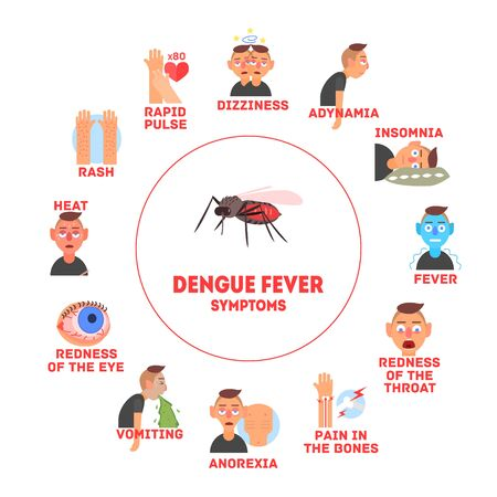 Dengue Fever Symptoms Information Banner Template Vector Illustration, Web Design. Ilustração
