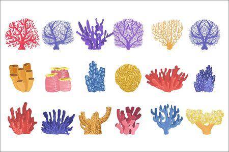 Verschiedene Arten von tropischen Korallenriffen Sammlung von detaillierten realistischen Vektorillustrationen auf weißem Hintergrund