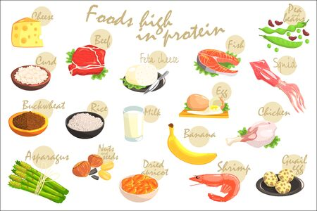 Food Rich In Proteins Hand-Drawn Realistic Poster With Text Information In Vector Design