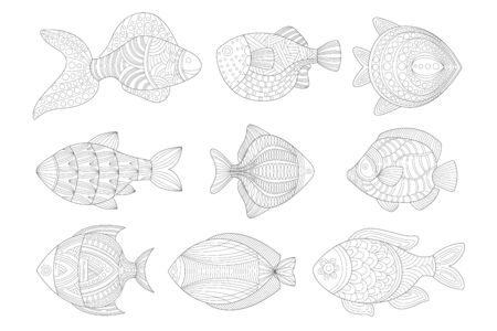 Tropical Fish Set Adult Coloring Book Illustration