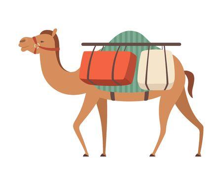 Animal del desierto del camello que lleva la carga pesada, ilustración del vector de la vista lateral en el fondo blanco.