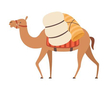 Animale del deserto del cammello che cammina con carico pesante, illustrazione vettoriale di vista laterale