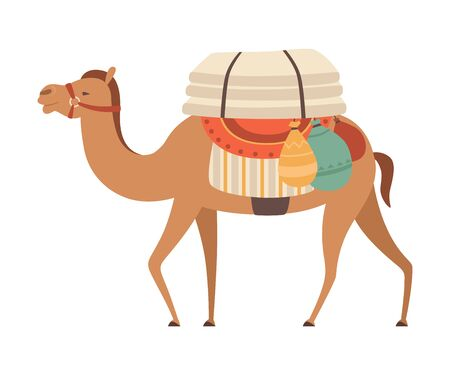 Camel with Bridle and Saddle, Desert Animal Walking with Load, Side View Vector Illustration