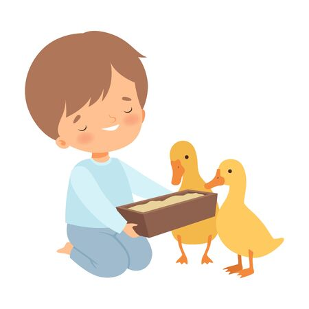 Cute Little Boy Feeding Ducklings, Adorable Kid Caring for Animal at Farm Cartoon Vector Illustration on White Background.
