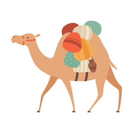 Camel with Bridle and Saddle, Desert Animal Carrying Heavy Load, Side View Vector Illustration on White Background. Çizim