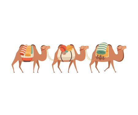 Caravan of Camels, Desert Animals Carrying Heavy Load, Side View Vector Illustration on White Background.  イラスト・ベクター素材