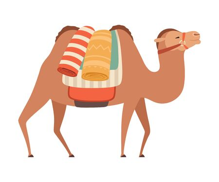 Camel with Bridle and Saddle, Desert Animal with Load, Side View Vector Illustration on White Background.