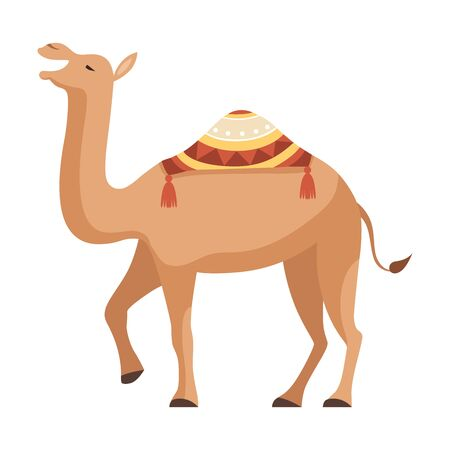 Dromedary, One Humped Camel with Bridle and Saddle Decorated with Ethnic Ornament Vector Illustration