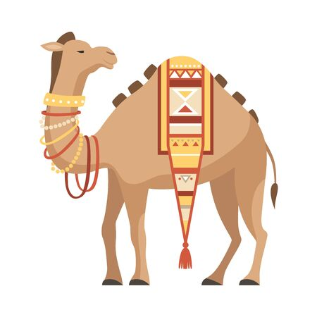 Dromedary, One Humped Camel with Saddle Decorated with Ethnic Ornament Vector Illustration on White Background.  イラスト・ベクター素材