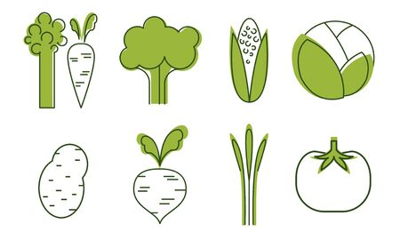 Fresh Vegetables Icons Set, Cabbage, Beet, Tomato, Broccoli, Asparagus, Carrot, Corncob, Organic Healthy Food Signs Vector Illustration on White Background. Çizim