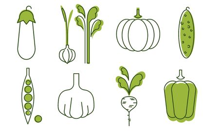 Fresh Vegetables Icons Set, Eggplant, Onion, Garlic, Cucumber, Pepper, Radish, Green Peas, Pumpkin, Organic Healthy Food Signs Vector Illustration on White Background.